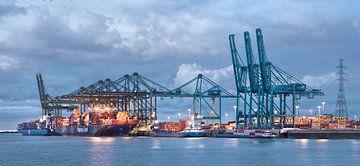Drukke containerterminal Haven van Antwerpen van Tony Vingerhoets