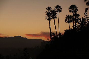 California van Gosia Lubbers