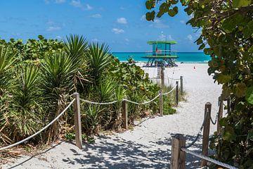 Miami Beach, tropisch paradijs van Peter Leenen