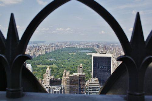 Central Park, NY van Pamela Fritschij