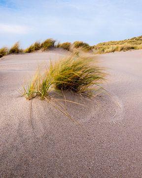 Maasvlakte 25 von Deshamer