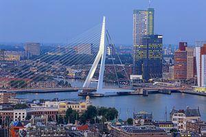 Blick auf Rotterdam