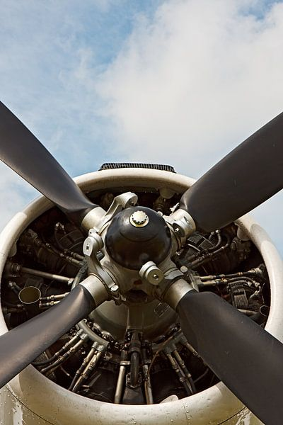 Old AN-2 vliegtuig propeller van Jan Brons