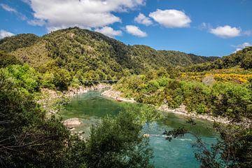 Buller Gorge Swing Bridge, Nieuw-Zeeland van Christian Müringer