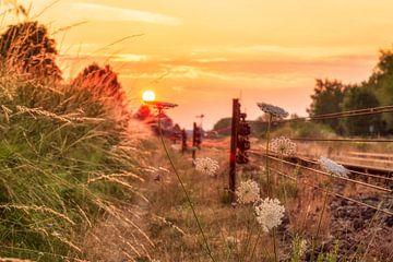 Zonsopkomst op het spoor in Simpelveld