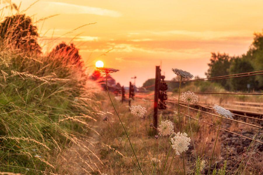 Zonsopkomst op het spoor in Simpelveld van John Kreukniet