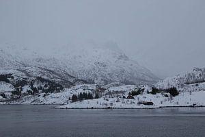Mistige berg in Lofoten van