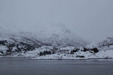 Mistige berg in Lofoten von Ymala Antonsen