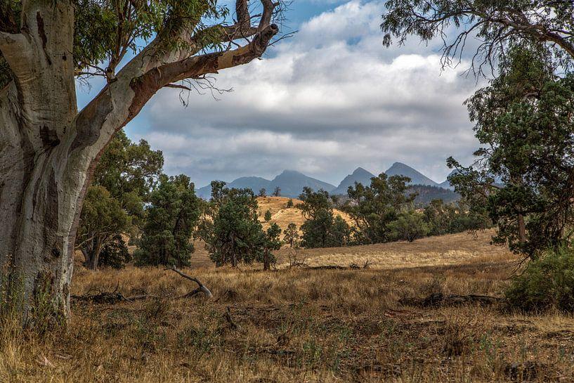 Flinders Ranges van Joke Beers-Blom