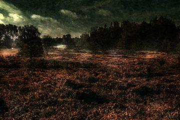 Wetlands sur