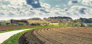 Lines in landscape van Wim van D