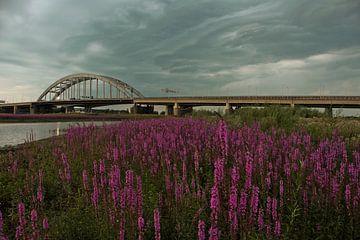 Leckagebrücke Vianen 1 von Maarten Kerkhof