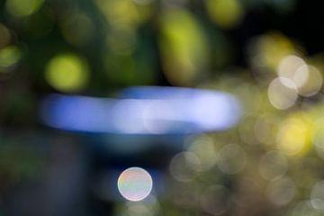 Blauw tussen groen van Wim Stolwerk