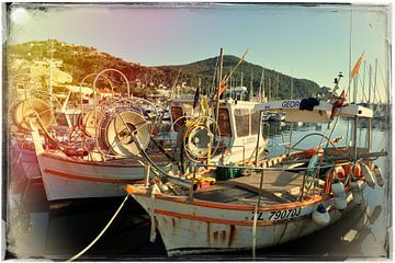 Barques de pêche sur Martine Affre Eisenlohr