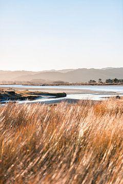 Gouden uur landschap Nieuw Zeeland van Niels Rurenga