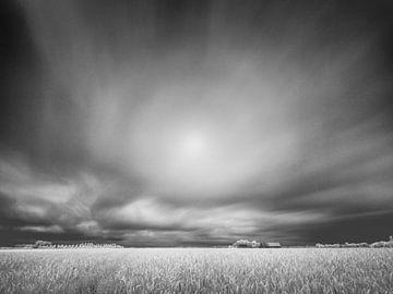 Graanveld in infrarood van Lex Schulte