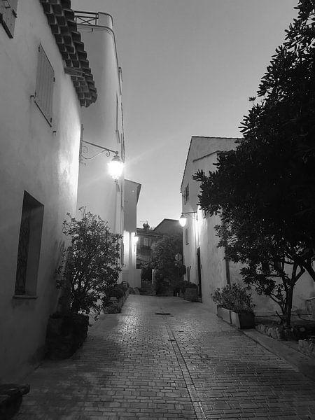 Straatje aan  La Ponche Saint-Tropez van Tom Vandenhende