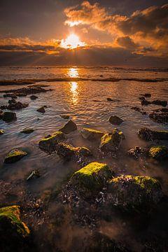 Steine mit Algen von peterheinspictures