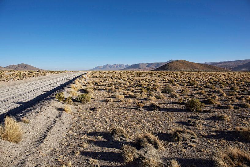 Onverharde weg door de Farallon de Tara woestijn in Bolivia van Tjeerd Kruse