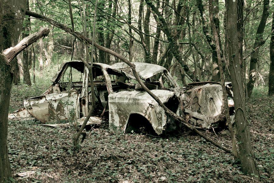 Auto in het bos