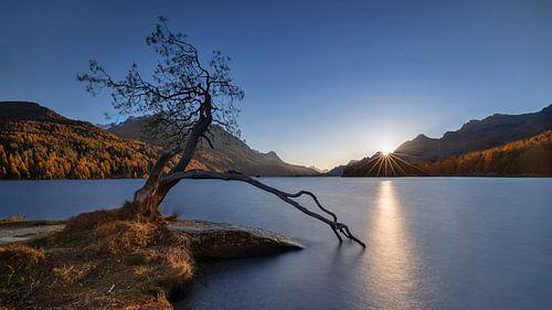 Sonnenuntergang am Silsersee