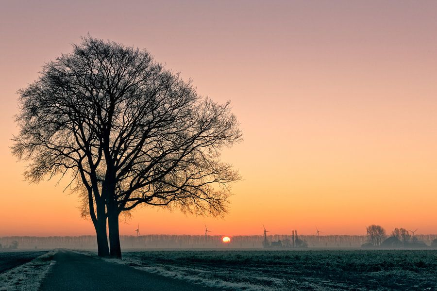 Hollands landschap in de winter van eric van der eijk