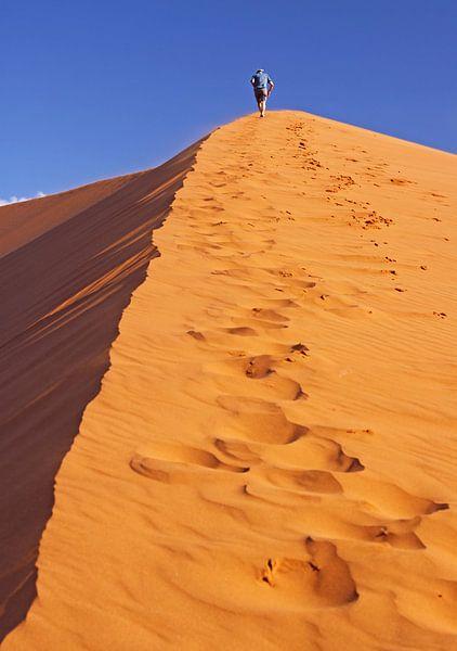 Walk the dune - Namib, Namibia van W. Woyke