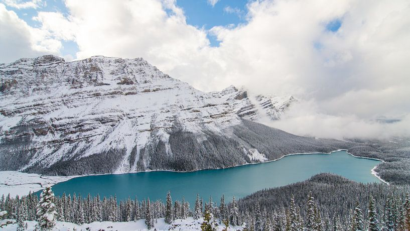 Peyto Lake, Banff National Park van Johan van Venrooy