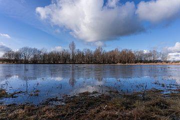 Reflexion in der Nähe des Mantingervelds von Lea Wever