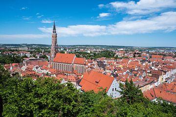 Skyline van Landshut in Neder-Beieren van Animaflora PicsStock