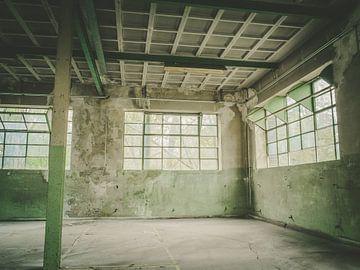 Chambre verte avec fenêtres
