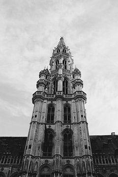 Rathaus von Brüssel von Arda Ersert