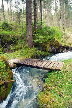 Bach im Wald von BVpix