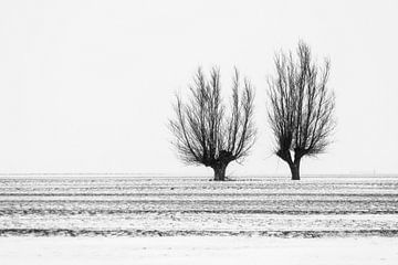 Winterlandschap, Nederland van Nynke Altenburg