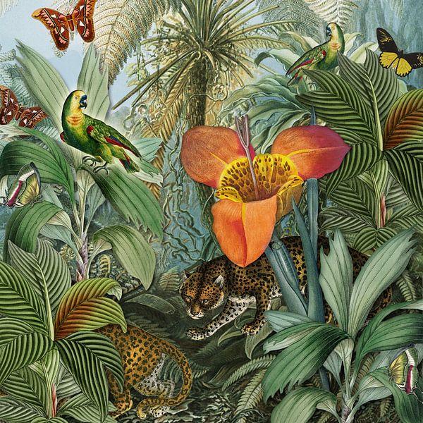 Die große Tigerlilie von christine b-b müller