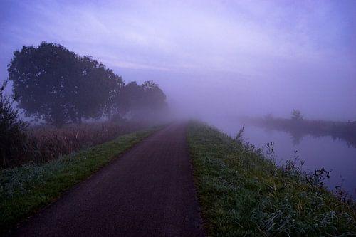 Mistige ochtend in het Leekstermeergebied Groningen van Hessel de Jong