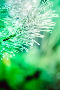 Een twijg van een spar, vol met waterdruppels, abstract uitgevoerd met groene en lichtblauwe kleuren