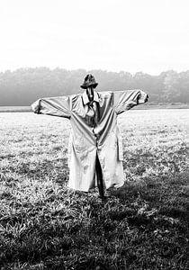 Zwart-wit portret van een vogelverschrikker in de mist op een landje