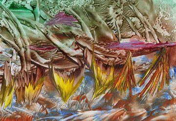 Geistreiche Farben 05 von Terra- Creative