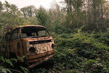 Viva Volkswagen van dafne Op 't Eijnde