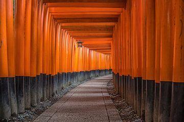 Oinari-San heiligdom in Kyoto Japan van Celina Dorrestein