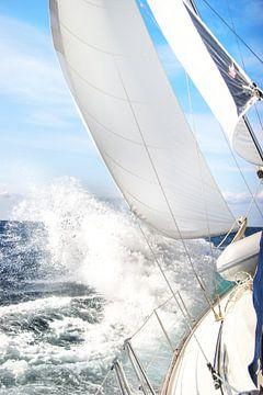 Naviguer dans la tempête sur Jan Schuler