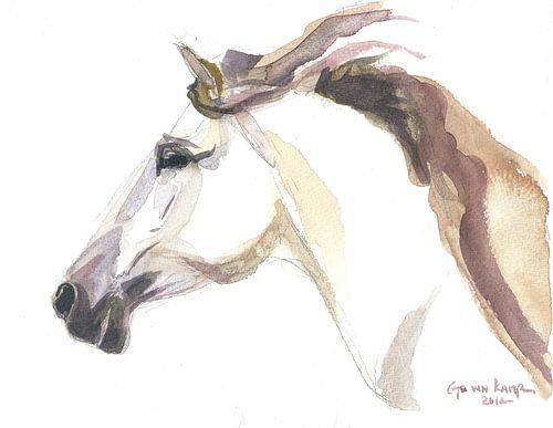 Paard Julia van