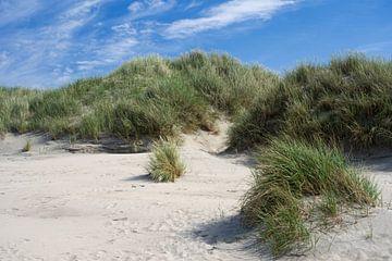 Paysage de dunes sur Baltrum sur Anja B. Schäfer