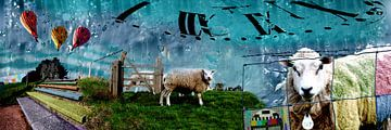 Sheep van Jaap Reedijk
