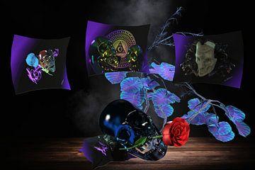 Skull mit Gallery von Norbert Barthelmess
