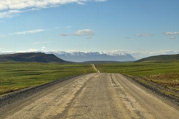 Unterwegs im sonnigen Island von Renzo de Jonge