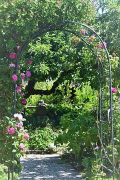 Zomaar prachtige tuinen van Lendy Fotografie .