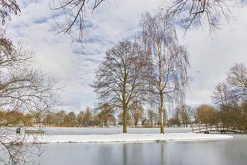 Winterlandschap van Ad Jekel