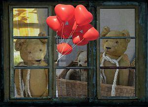 Window view - oud teddies